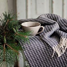 #allthebeautifulthings #morning #autum #cozyautumn #fall #november #tea t#teatime #pine
