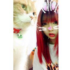 9よ미❤️ どうしてもビョンちゃんにSNOWやりたくて 秋田帰って来てからずっと頑張ってるけど 反応してくれないウチの猫ちゃん…(=^x^=) #9よ미 #귀요미  #me #selfie #selca #family #pet #cat #愛猫 #猫 #ペット #ビョンちゃん #スコティッシュフォールド  #スコティッシュフォールド立ち耳 #スコティッシュ #🐈 #akita #hometown #myhome #👹 #redhair #3ce #fashion #code #thrasher  #秋田 #地元 #秋田市 #土崎 #帰省