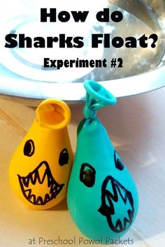 Awesome science experiment showing how sharks float! This science project is perfect for preschool, kindergarten, and older kids! Great for ocean themes, ocean units, and shark week! Ocean Activities for Kids Science Week, Summer Science, Science For Kids, Science Centers, Kid Science Projects, Science Experiments For Preschoolers, Science Toddlers, Biology For Kids, Science Daily