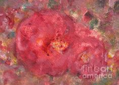 Rose de Paradise is a Watercolor and Tempera Painting painted in Rose de Paradise have been exhibited in New York at Amsterdam Whitney Gallery , in Rome at Galleria Il Collezionista this summer july Rose Varieties, Rose Oil, Tea Roses, Fine Art America, Greeting Cards, 1, Canvas Prints, Wall Art, Paradise