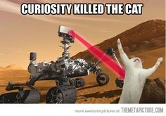 Funny / Curious Picture.