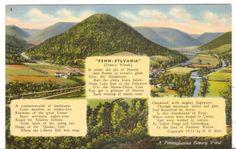 Undated Unused Postcard Pennsylvania A Beauty View Penn Woods