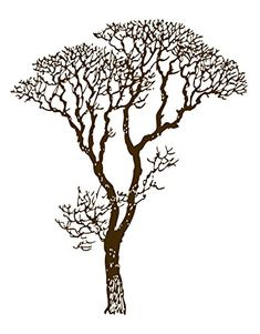 Brown Bare Autumn Tree Branches Wall Decal Sticker 6ft Tall by Stickerbrand  Easy to Apply and Removable  Made in the USA  No Glue Needed Safer than wallpaper  Brown color 240ABrown * Check this awesome product by going to the link at the image.