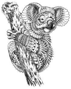 Ornate Koala on Behance