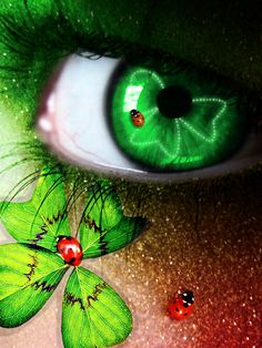 <̲̅Θ̲̅> <̲̅Θ̲̅> Luck of the Irish Cool Contacts, Green Contacts Lenses, Eyes Without A Face, Look Into My Eyes, Eyes Artwork, Types Of Eyes, Magic Eyes, Human Eye, Luck Of The Irish