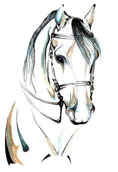 """Horse Art: """"Distinguished Lady"""", Watercolor & Ink Painting Reproduction. $20.00, via Etsy."""