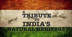 Do You Know The National Anthem Of India Well Enough? - Quizified India