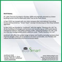 EcoSmart HuB - Brief History