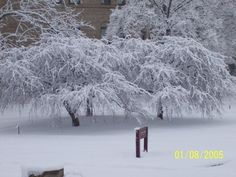 Snow outside Peters Hall.