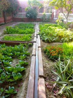 sunken garden. great for arid climates. AND its own irrigation canal!