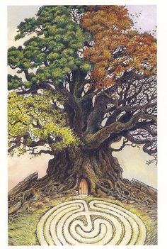 Tree With Labyrinth, Middle Age, Midlife journey,