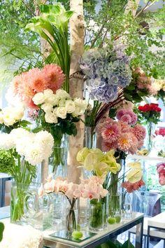 ★ ♥ ♡༺✿ ☾♡ ♥ ♫ La-la-la Bonne vie ♪ ♥❀ ♢♦ ♡ ❊ ** Have a Nice Day! ** ❊ ღ‿ ❀♥ ~ Fr 12th June 2015 ~ ❤♡༻ ☆༺❀ .•` ✿⊱ ♡༻ ღ☀ᴀ ρᴇᴀcᴇғυʟ ρᴀʀᴀᴅısᴇ¸.•` ✿⊱╮ ♡ ❊