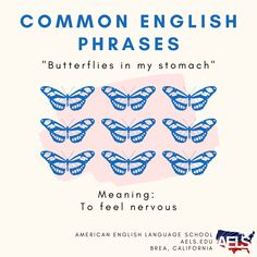 You may hear this funny phrase from English speakers, but it doesn't really mean there are butterflies in their stomach! It's just an idiom that means they feel nervous. Idioms And Phrases, Funny Phrases, English Phrases, English Language, Butterflies In My Stomach, Language School, American English, Speakers, Meant To Be