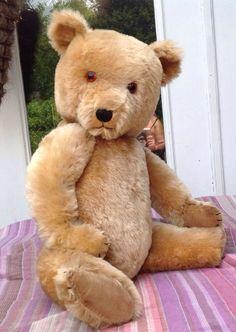 "GREAT BIG Cuddly ANTIQUE Original CHILTERN HUGMEE Mohair TEDDY BEAR 27"" NO RSV #Chiltern"