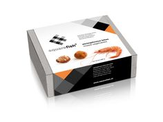 Square Fish on Packaging of the World - Creative Package Design Gallery