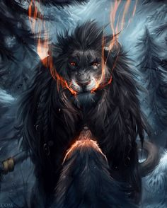 Lion and the Wolf ...Really? (Detail) | Kipine at DeviantArt