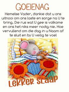 Cold Weather Quotes, Goeie Nag, Afrikaans, Good Night, Teddy Bear, Sayings, Nighty Night, Lyrics, Teddy Bears