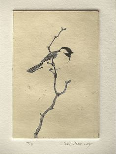 "Joel Ostlind, ""Chickadee T/P"" Copper Plate Etching 6""x 4"""