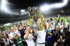 Palmeiras vence o Santos nos pênaltis e fica com o título da Copa do Brasil #globoesporte