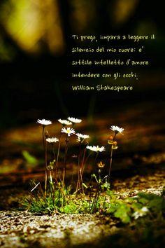 Ti prego impara a leggere il silenzio del mio cuore di William Shakespeare