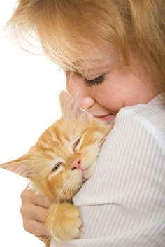 How well can cats communicate?