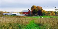 There's a Bakery On This Beautiful Farm In Michigan And You Have To Visit