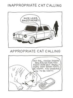 Inappropriate vs. Appropriate Cat Calling