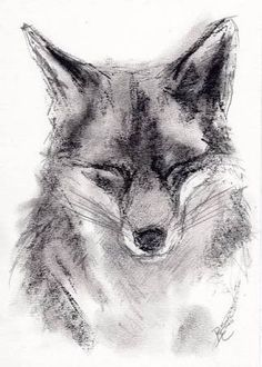 Charcoal Drawing of a FOX by by BelindaElliottArt. Just something about this one that i Charcoal Drawing of a FOX by by BelindaElliottArt. Animal Drawings, Pencil Drawings, Art Drawings, Drawings Of Love, Hipster Drawings, Drawing Animals, Charcoal Sketch, Charcoal Drawings, Abstract Charcoal Art