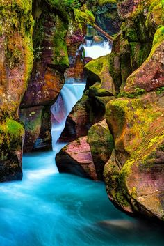 Narrow Stream in Glacier National Park, Montana United States