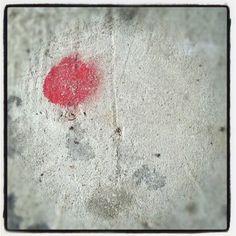 Instagram by Tracy Sheppard of Studio Soleil