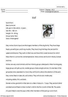 red wolves endangered species and worksheets on pinterest. Black Bedroom Furniture Sets. Home Design Ideas
