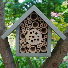 "Native Bee House for the Garden - ""It is designed primarily to be used by solitary bees such as Mason Bees or Leafcutter Bees, which are non aggressive and excellent for pollinating the plants in your yard, helping to increase fruit yields. Carpenter Bee Trap, Bee Traps, Bee House, House Wall, Bug Hotel, Mason Bees, Raising Bees, Tiered Garden, Save The Bees"
