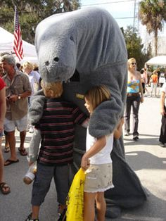 Well this Manatee costume settles it