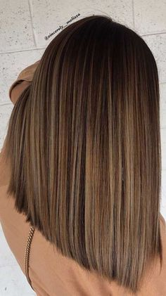 Brown Hair Balayage, Brown Blonde Hair, Highlights In Brown Hair, Blonde Balayage, Brown Highlighted Hair, Brown Balyage, Light Brunette Hair, Balayage Straight Hair, Fall Highlights