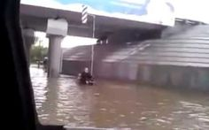 Dog Pushes Owner in Wheelchair Through Flooded Russian Street
