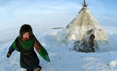 Support for the indigenous peoples of the North in Yamal received a legislative framework - Legislation: Arctic-Info Arctic, Russia, News, People, People Illustration, Folk
