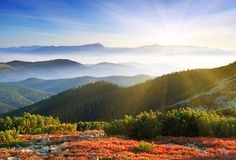 Утро, лучи, туман, солнце, лес, природа, рассвет, горы