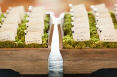 How clever to have tees in moss holding escort cards for a wedding.