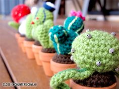 Crochet plants are perfect because you don't have to take care of them :D
