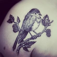 bird on a branch by otto d'ambra #shoulder #tattoos i wonder how this would age... all the little lines are beautiful, but what about when they become blurry with time?