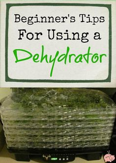 Mending the Piggy Bank | Beginner's Tips For Using a Dehydrator -- As long as there have been harvest seasons, people have looked for ways to preserve that harvest to enjoy later in the year. One of the oldest ways of doing this is dehydration. Read gardening expert Janice Lilly's tips for using an electric dehydrator.