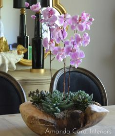 Interior: Orchid Arrangements With Succulents And Wood For Interior Design Orchid Centerpieces, Orchid Arrangements, Succulent Arrangements, Orchids Garden, Orchid Plants, Succulents Garden, Floral Foam, Wooden Bowls, Indoor Plants