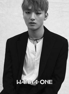 JiSung (Wanna One) Daniel Jihoon Minhyun Seongwu Kuanlin Sungwoon Woojin JinYoung Jaehwan Daehwi Jisung Jinyoung, K Pop, Guan Lin, Ong Seongwoo, Produce 101 Season 2, Kim Jaehwan, Ha Sungwoon, 3 In One, Profile Photo