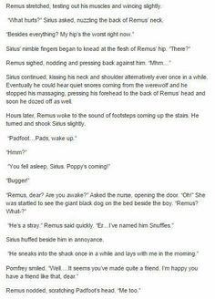 the marauders - wolfstar part 2 - I like this, even though I dont really ship them<< I totally ship the but I ship RemusxTonks as well Harry Potter Feels, Harry Potter Marauders, Harry Potter Ships, Harry Potter Jokes, Harry Potter Universal, Harry Potter Fandom, Harry Potter World, Harry Potter Hogwarts, Marauders Era