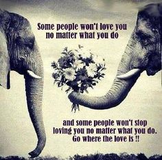 Very true... Never settle for mediocre love
