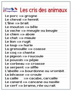 The diplomas in the French education system French Language Lessons, French Language Learning, French Lessons, French Expressions, French Teaching Resources, Teaching French, How To Speak French, Learn French, French Flashcards