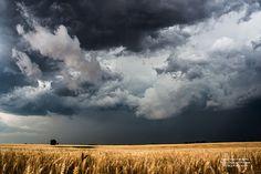 Landscape Photography Wall Art Kansas by SouthernPlainsPhoto