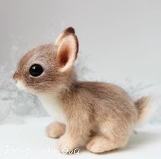 Baby Animals Funny Photo # Wedding Ring Ideas – # Wedding Ring Ideas # Photography Related posts:Taking photos in the rainModern Cinderella Wedding Inspiration - Alex Pollich - # Cinderella # . Baby Animals Super Cute, Cute Baby Bunnies, Cute Little Animals, Cute Funny Animals, Cute Cats, Cute Babies, Cutest Animals, Bunny, Baby Animals Pictures