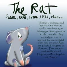 Chinese Astrology - Rat