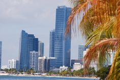 Miami Miami City, Florida Usa, San Francisco Skyline, Places Ive Been, Heaven, World, Cities, Traveling, Kids Backpacks